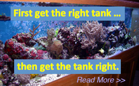 The right tank